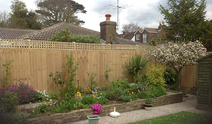 Garden Fencing Feather Edge Panels with Trellis